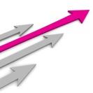 Conducerea pentru Performanta / Leadership for Performance